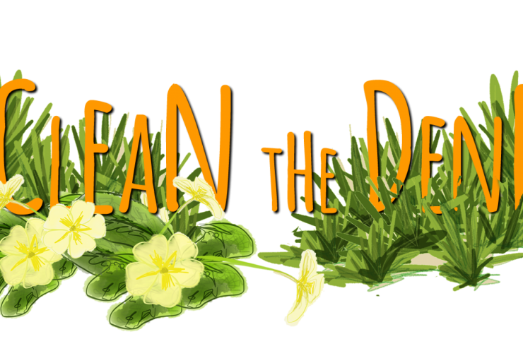 Clean the dene logo